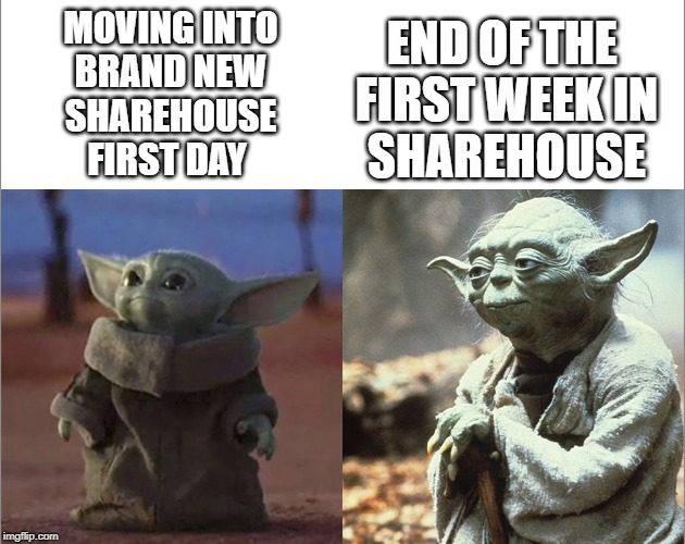 Baby Yoda Old Yoda | MOVING INTO BRAND NEW SHAREHOUSE FIRST DAY END OF THE  FIRST WEEK IN SHAREHOUSE | image tagged in baby yoda old yoda | made w/ Imgflip meme maker