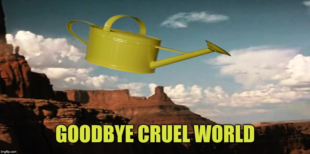 Thelma and Louise Airborne | GOODBYE CRUEL WORLD | image tagged in thelma and louise airborne | made w/ Imgflip meme maker