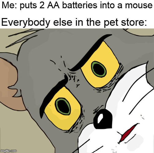 Unsettled Tom | Me: puts 2 AA batteries into a mouse Everybody else in the pet store: | image tagged in batteries,mouse,pet store | made w/ Imgflip meme maker
