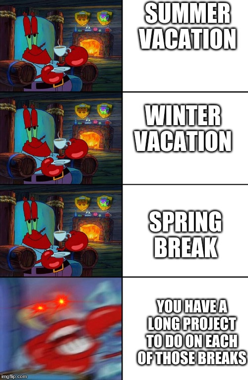 Shocked Mr Krabs | SUMMER VACATION WINTER VACATION SPRING BREAK YOU HAVE A LONG PROJECT TO DO ON EACH OF THOSE BREAKS | image tagged in shocked mr krabs | made w/ Imgflip meme maker