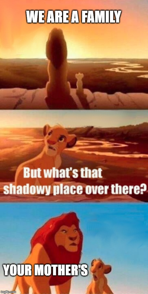 Simba Shadowy Place Meme | WE ARE A FAMILY YOUR MOTHER'S | image tagged in memes,simba shadowy place | made w/ Imgflip meme maker