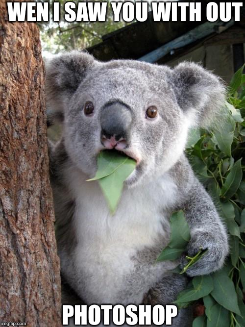 Surprised Koala |  WEN I SAW YOU WITH OUT; PHOTOSHOP | image tagged in memes,surprised koala | made w/ Imgflip meme maker