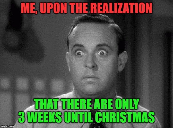 shocked face |  ME, UPON THE REALIZATION; THAT THERE ARE ONLY 3 WEEKS UNTIL CHRISTMAS | image tagged in shocked face | made w/ Imgflip meme maker
