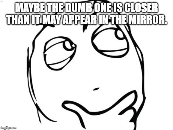 Question Rage Face | MAYBE THE DUMB ONE IS CLOSER THAN IT MAY APPEAR IN THE MIRROR. | image tagged in memes,question rage face | made w/ Imgflip meme maker