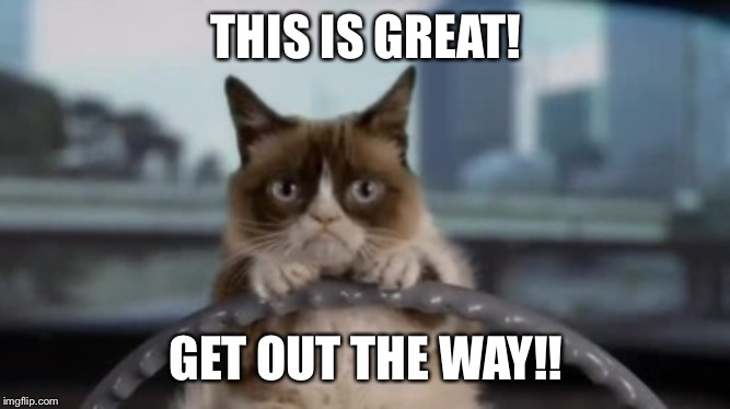 Grumpy cat driving | THIS IS GREAT! GET OUT THE WAY!! | image tagged in grumpy cat driving | made w/ Imgflip meme maker
