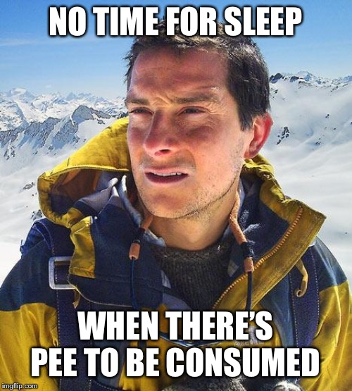 Bear Grylls Meme | NO TIME FOR SLEEP WHEN THERE'S PEE TO BE CONSUMED | image tagged in memes,bear grylls | made w/ Imgflip meme maker