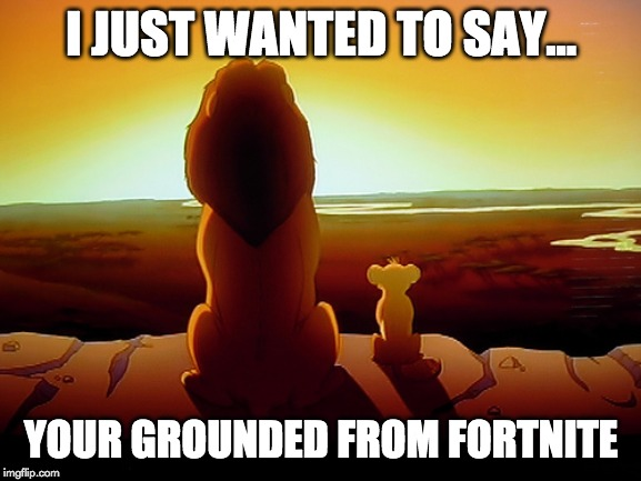 Lion King | I JUST WANTED TO SAY... YOUR GROUNDED FROM FORTNITE | image tagged in memes,lion king | made w/ Imgflip meme maker
