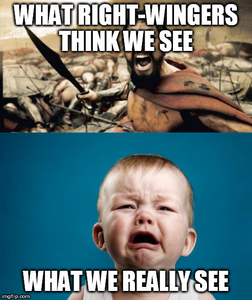The Truth About The Right |  WHAT RIGHT-WINGERS THINK WE SEE; WHAT WE REALLY SEE | image tagged in memes,sparta leonidas,baby crying,right wing,right-wing,conservative logic | made w/ Imgflip meme maker