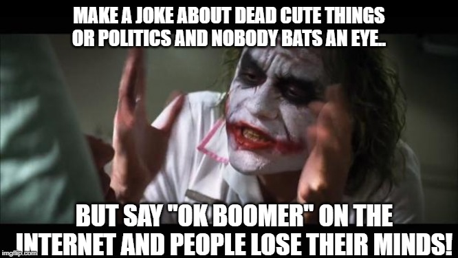 "And everybody loses their minds Meme | MAKE A JOKE ABOUT DEAD CUTE THINGS OR POLITICS AND NOBODY BATS AN EYE.. BUT SAY ""OK BOOMER"" ON THE INTERNET AND PEOPLE LOSE THEIR MINDS! 