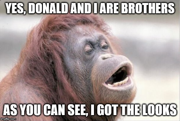 Monkey OOH | YES, DONALD AND I ARE BROTHERS AS YOU CAN SEE, I GOT THE LOOKS | image tagged in memes,monkey ooh | made w/ Imgflip meme maker