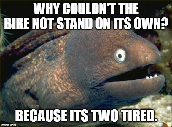Bad Joke Eel | WHY COULDN'T THE BIKE NOT STAND ON ITS OWN? BECAUSE ITS TWO TIRED. | image tagged in memes,bad joke eel | made w/ Imgflip meme maker