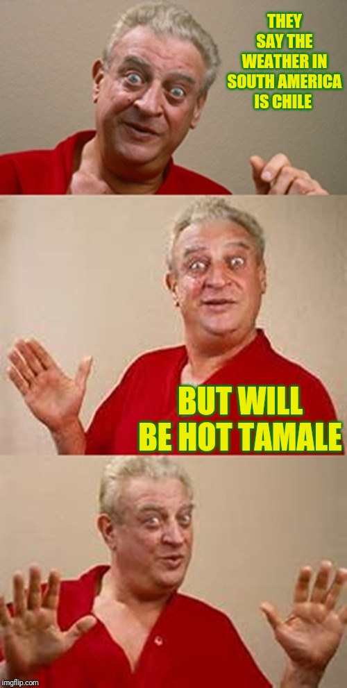 bad pun Dangerfield  | THEY SAY THE WEATHER IN SOUTH AMERICA IS CHILE BUT WILL BE HOT TAMALE | image tagged in bad pun dangerfield | made w/ Imgflip meme maker