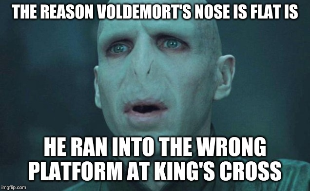 Voldemort |  THE REASON VOLDEMORT'S NOSE IS FLAT IS; HE RAN INTO THE WRONG PLATFORM AT KING'S CROSS | image tagged in voldemort | made w/ Imgflip meme maker