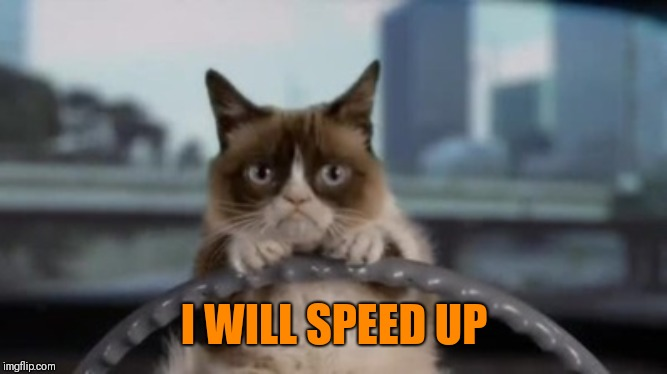 Grumpy cat driving | I WILL SPEED UP | image tagged in grumpy cat driving | made w/ Imgflip meme maker