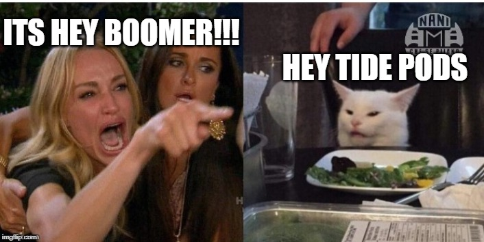 white cat table | ITS HEY BOOMER!!! HEY TIDE PODS | image tagged in white cat table | made w/ Imgflip meme maker
