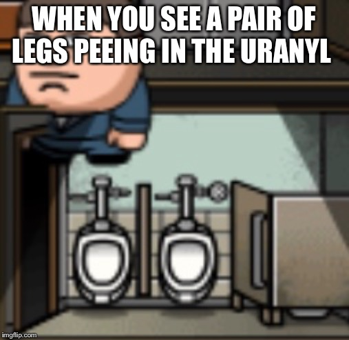 WHEN YOU SEE A PAIR OF LEGS PEEING IN THE URANYL | image tagged in wtf,peeing,memes,funny memes,restroom,man | made w/ Imgflip meme maker