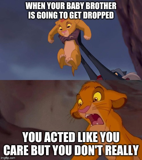 simba |  WHEN YOUR BABY BROTHER IS GOING TO GET DROPPED; YOU ACTED LIKE YOU CARE BUT YOU DON'T REALLY | image tagged in simba,funny memes,simba memes | made w/ Imgflip meme maker