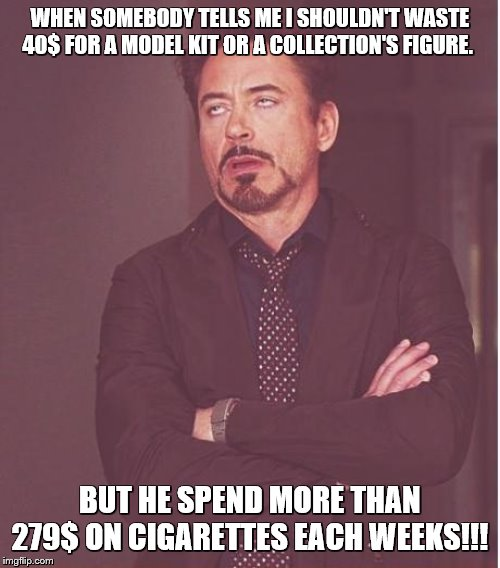 Face You Make Robert Downey Jr |  WHEN SOMEBODY TELLS ME I SHOULDN'T WASTE 40$ FOR A MODEL KIT OR A COLLECTION'S FIGURE. BUT HE SPEND MORE THAN 279$ ON CIGARETTES EACH WEEKS!!! | image tagged in memes,face you make robert downey jr,cigarettes,toys,model kits | made w/ Imgflip meme maker