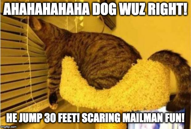 Waiting the mailman | AHAHAHAHAHA DOG WUZ RIGHT! HE JUMP 30 FEET! SCARING MAILMAN FUN! | image tagged in waiting the mailman | made w/ Imgflip meme maker