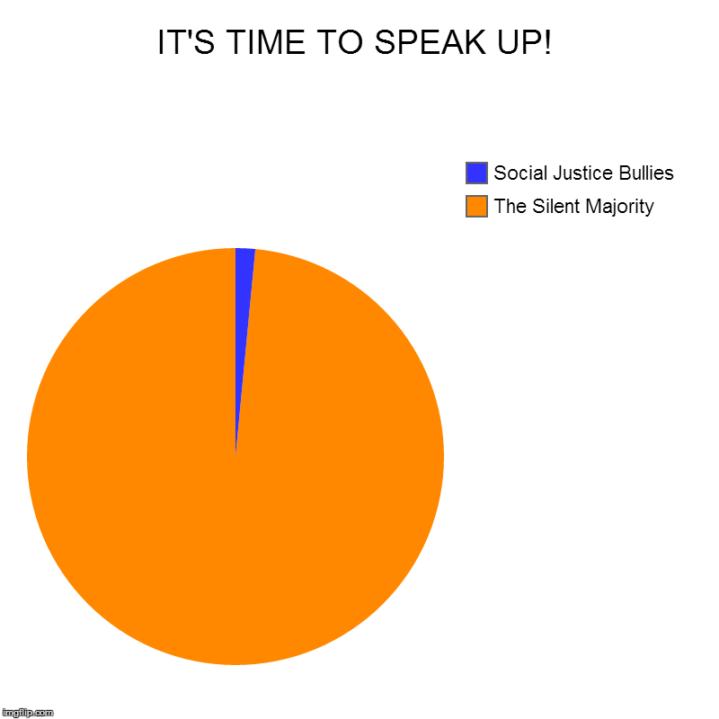 A Time To Speak | IT'S TIME TO SPEAK UP! | The Silent Majority, Social Justice Bullies | image tagged in pie charts,silence,social justice,sjws,bravery,political meme | made w/ Imgflip chart maker