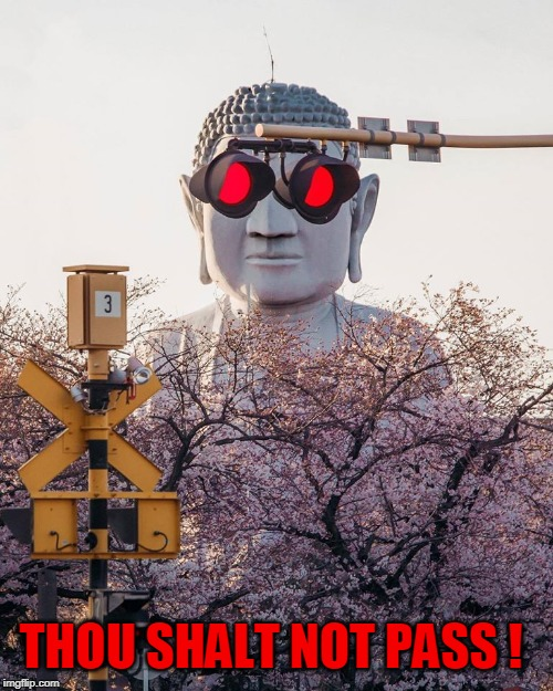Big Brother Is Watching | THOU SHALT NOT PASS ! | image tagged in memes,you shall not pass,traffic light,traffic,buddha | made w/ Imgflip meme maker