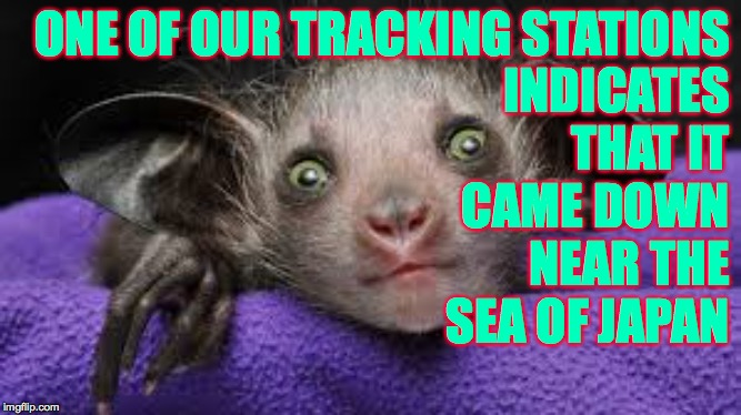 ONE OF OUR TRACKING STATIONS INDICATES THAT IT CAME DOWN NEAR THE SEA OF JAPAN | made w/ Imgflip meme maker