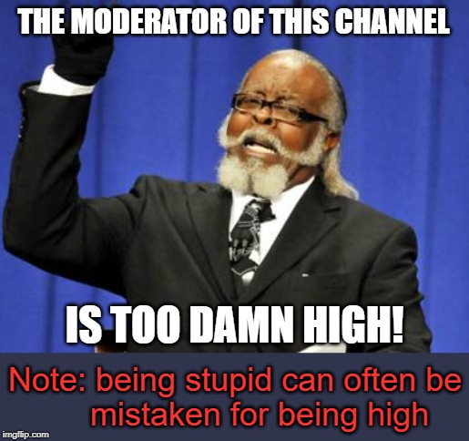 I'm saying this about myself so... | THE MODERATOR OF THIS CHANNEL IS TOO DAMN HIGH! Note: being stupid can often be          mistaken for being high | image tagged in memes,too damn high,egos,stupid | made w/ Imgflip meme maker