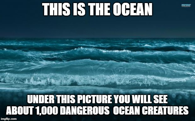 Ocean Waves |  THIS IS THE OCEAN; UNDER THIS PICTURE YOU WILL SEE ABOUT 1,000 DANGEROUS  OCEAN CREATURES | image tagged in ocean waves | made w/ Imgflip meme maker