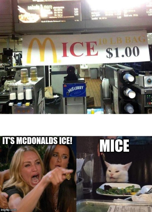 McDonald's Ice, or Mice | IT'S MCDONALDS ICE! MICE | image tagged in memes,woman yelling at cat,funny,mcdonalds,misspelled | made w/ Imgflip meme maker