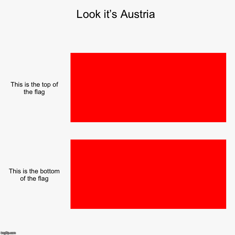 Look it's Austria | This is the top of the flag, This is the bottom of the flag | image tagged in charts,bar charts | made w/ Imgflip chart maker