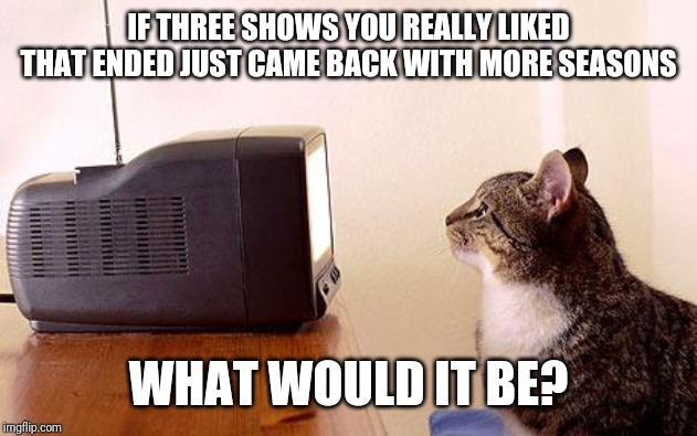 cat watching tv |  IF THREE SHOWS YOU REALLY LIKED THAT ENDED JUST CAME BACK WITH MORE SEASONS; WHAT WOULD IT BE? | image tagged in cat watching tv,memes | made w/ Imgflip meme maker