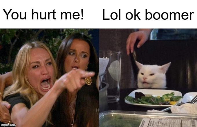 Woman Yelling At Cat Meme | You hurt me! Lol ok boomer | image tagged in memes,woman yelling at cat | made w/ Imgflip meme maker