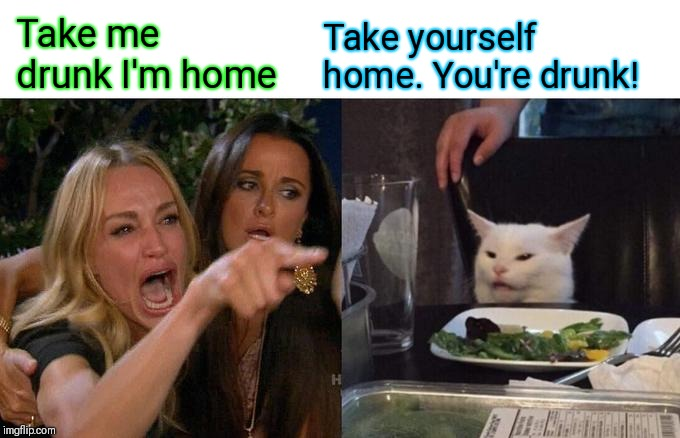 She home walked ;) | Take me drunk I'm home Take yourself home. You're drunk! | image tagged in memes,woman yelling at cat,take me drunk im home,drunk,44colt,song lyrics | made w/ Imgflip meme maker