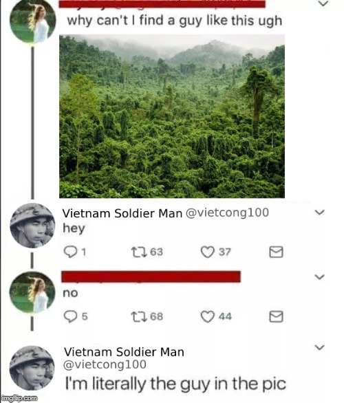 How could she reject him? He's right there! | image tagged in memes,funny,photoshop,bad photoshop sunday,twitter,vietnam | made w/ Imgflip meme maker