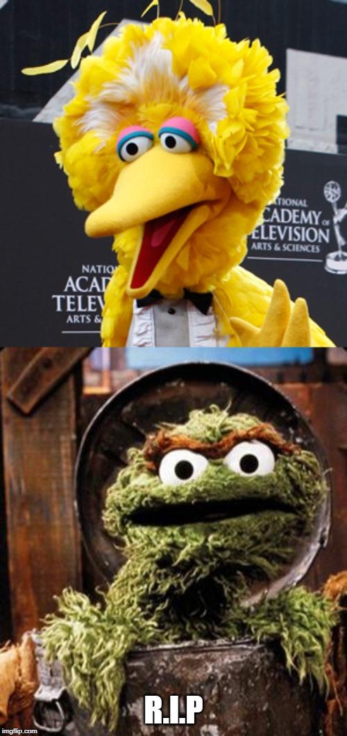 Oscar The Grouch Memes Gifs Imgflip