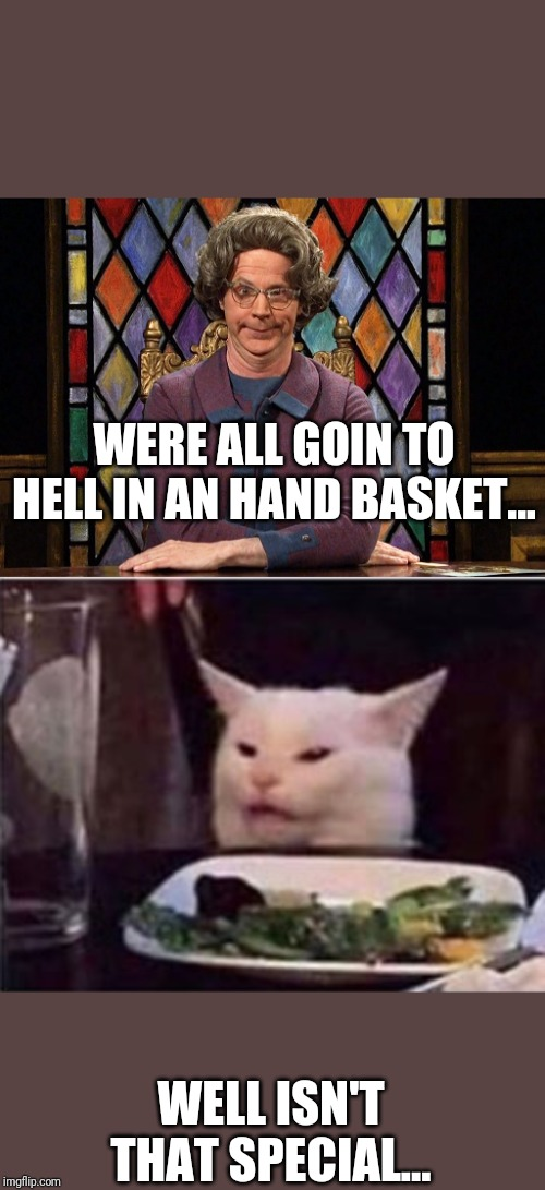 WERE ALL GOIN TO HELL IN AN HAND BASKET... WELL ISN'T THAT SPECIAL... | image tagged in the church lady,white dinner table cat | made w/ Imgflip meme maker