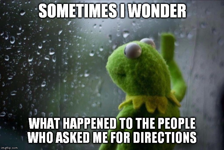 kermit the frog |  SOMETIMES I WONDER; WHAT HAPPENED TO THE PEOPLE WHO ASKED ME FOR DIRECTIONS | image tagged in sad kermit,sometimes i wonder,sometimes,kermit window,sometimes i wonder what happened | made w/ Imgflip meme maker