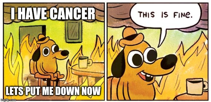 This Is Fine |  I HAVE CANCER; LETS PUT ME DOWN NOW | image tagged in this is fine dog | made w/ Imgflip meme maker