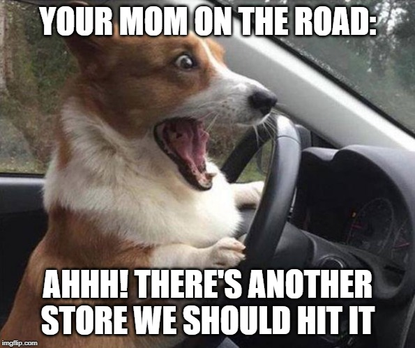 dog driving |  YOUR MOM ON THE ROAD:; AHHH! THERE'S ANOTHER STORE WE SHOULD HIT IT | image tagged in dog driving | made w/ Imgflip meme maker
