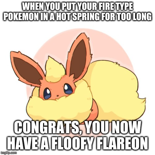 WHEN YOU PUT YOUR FIRE TYPE POKEMON IN A HOT SPRING FOR TOO LONG CONGRATS, YOU NOW HAVE A FLOOFY FLAREON | image tagged in too much floof | made w/ Imgflip meme maker