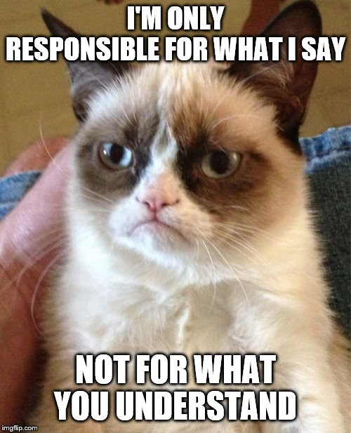 Grumpy Cat | I'M ONLY RESPONSIBLE FOR WHAT I SAY NOT FOR WHAT YOU UNDERSTAND | image tagged in memes,grumpy cat | made w/ Imgflip meme maker