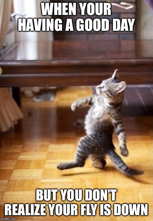 Cool Cat Stroll |  WHEN YOUR HAVING A GOOD DAY; BUT YOU DON'T REALIZE YOUR FLY IS DOWN | image tagged in memes,cool cat stroll | made w/ Imgflip meme maker
