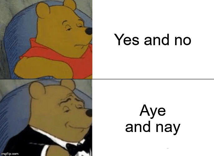 Tuxedo Winnie The Pooh | Yes and no Aye and nay | image tagged in memes,tuxedo winnie the pooh,words | made w/ Imgflip meme maker
