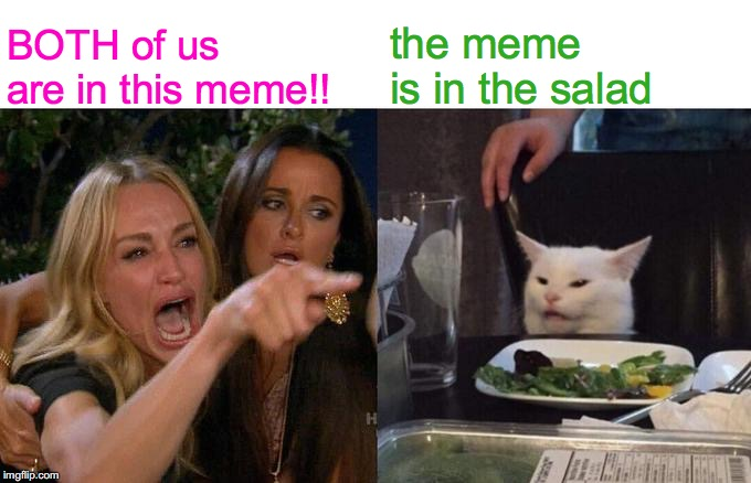 Woman Yelling At Cat | BOTH of us       are in this meme!! the meme  is in the salad | image tagged in memes,woman yelling at cat,angry lady cat,smudge the cat,salad cat,funny cat memes | made w/ Imgflip meme maker