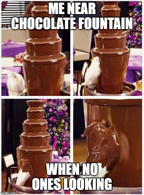 Birb | ME NEAR CHOCOLATE FOUNTAIN WHEN NO ONES LOOKING | image tagged in birb | made w/ Imgflip meme maker