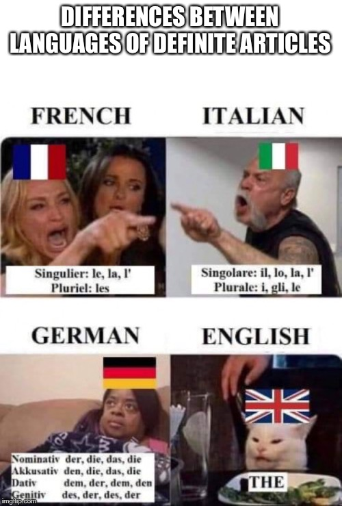 DIFFERENCES BETWEEN LANGUAGES OF DEFINITE ARTICLES | image tagged in language | made w/ Imgflip meme maker