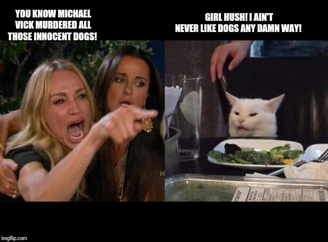 Crying lady and cat | YOU KNOW MICHAEL VICK MURDERED ALL THOSE INNOCENT DOGS! GIRL HUSH! I AIN'T NEVER LIKE DOGS ANY DAMN WAY! | image tagged in crying lady and cat | made w/ Imgflip meme maker