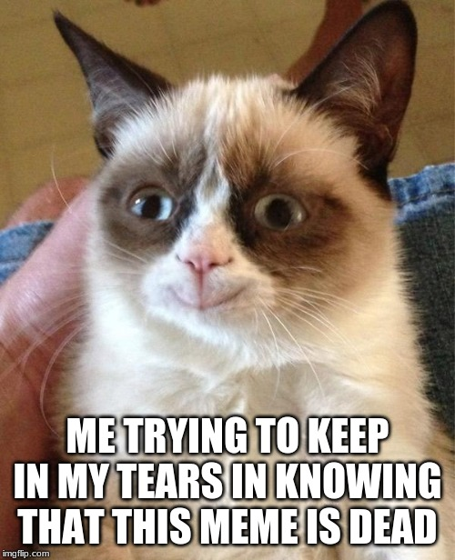 Grumpy Cat Happy |  ME TRYING TO KEEP IN MY TEARS IN KNOWING THAT THIS MEME IS DEAD | image tagged in memes,grumpy cat happy,grumpy cat | made w/ Imgflip meme maker