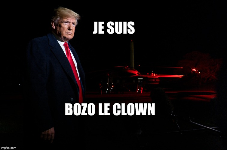 Donald |  JE SUIS; BOZO LE CLOWN | image tagged in donald trump the clown | made w/ Imgflip meme maker