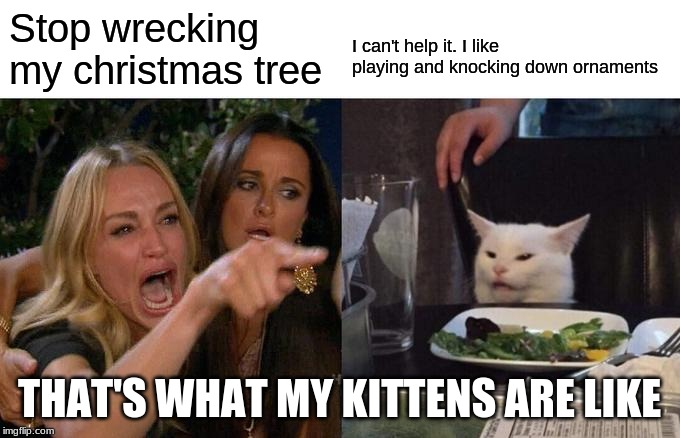 Woman Yelling At Cat Meme | Stop wrecking my christmas tree I can't help it. I like playing and knocking down ornaments THAT'S WHAT MY KITTENS ARE LIKE | image tagged in memes,woman yelling at cat | made w/ Imgflip meme maker